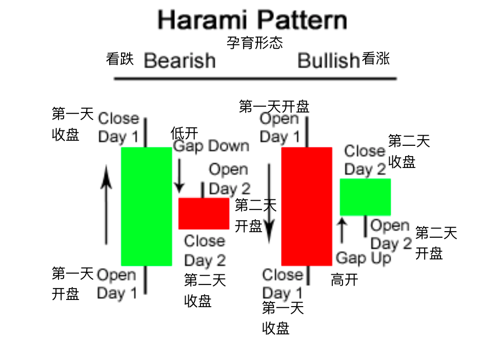 孕育型-Harami